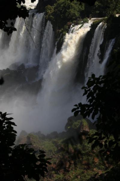 Iguazu-11