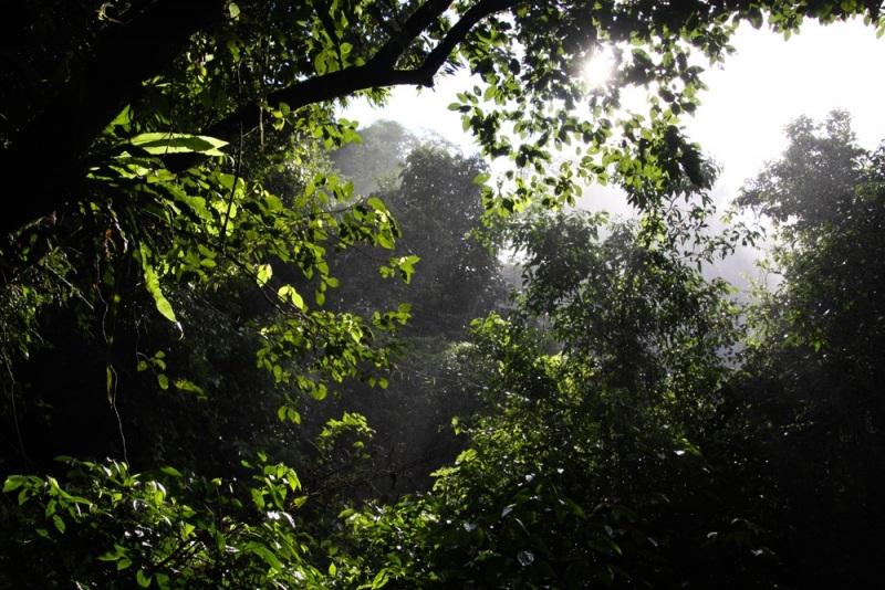 Iguazu-22