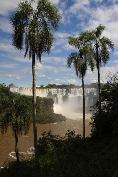 Iguazu-8