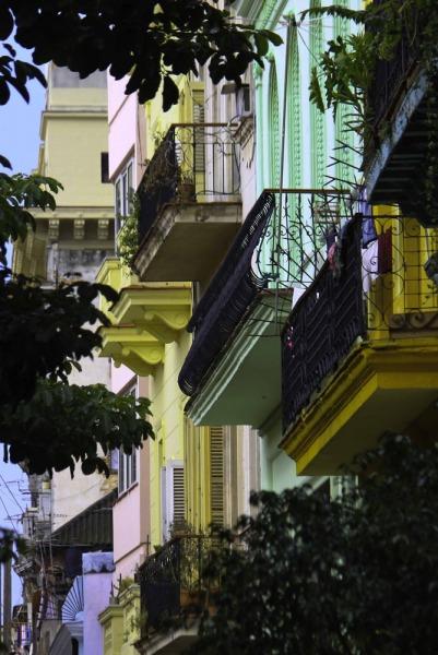 Havana-42