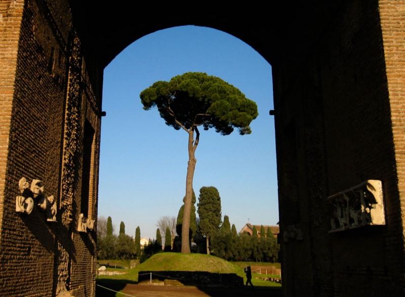 Rome-5-2