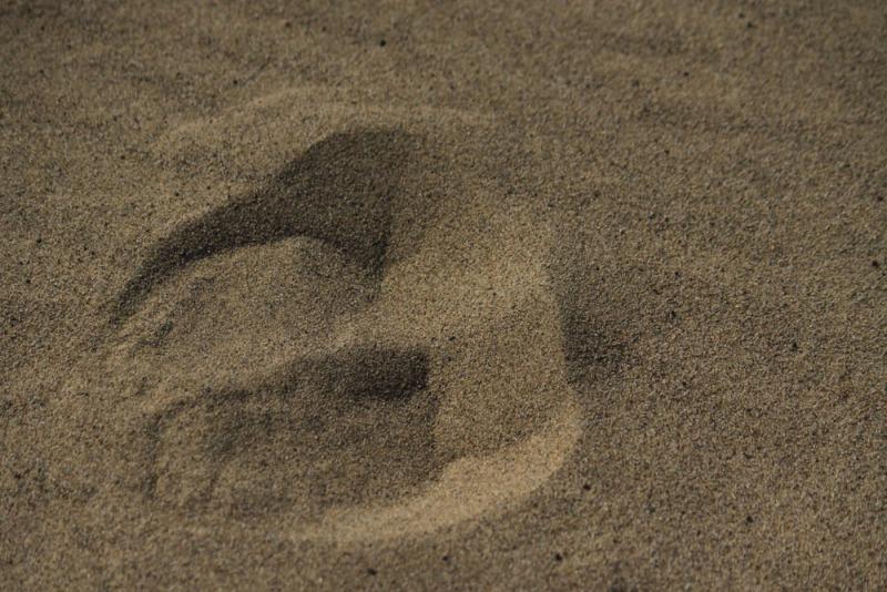 Arburd-Sands-8