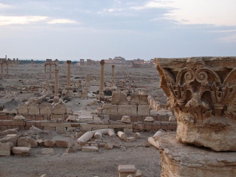 Palmyra-1-2