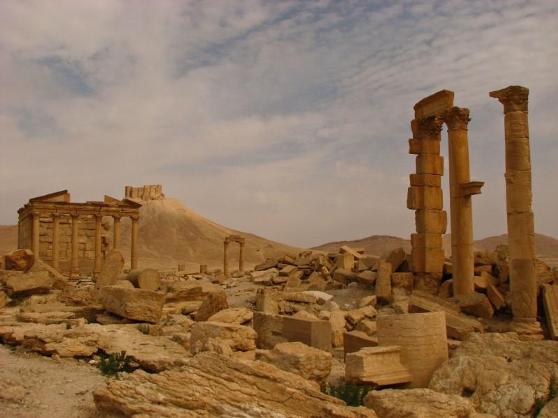 Palmyra-28-2
