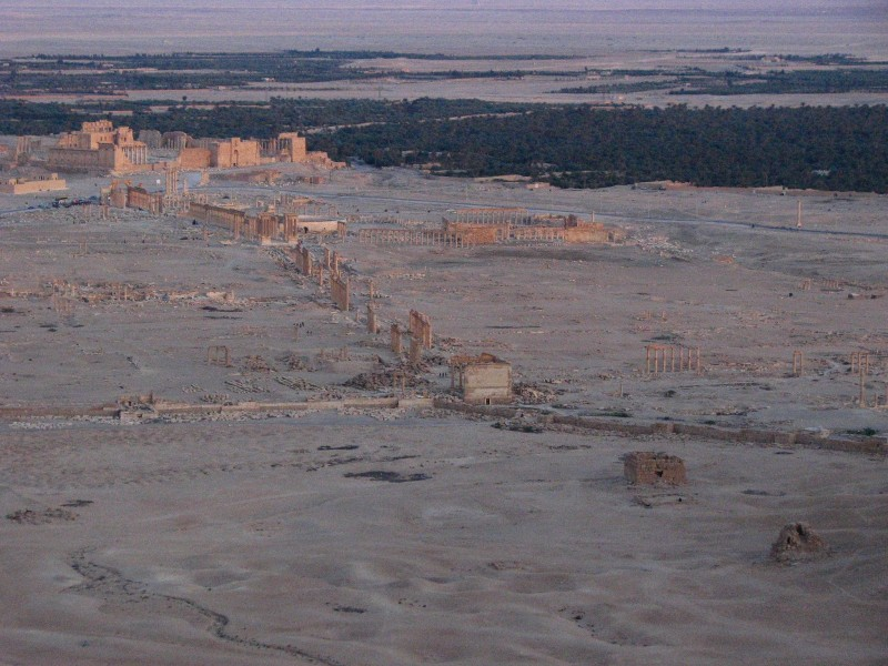 Palmyra-6-2