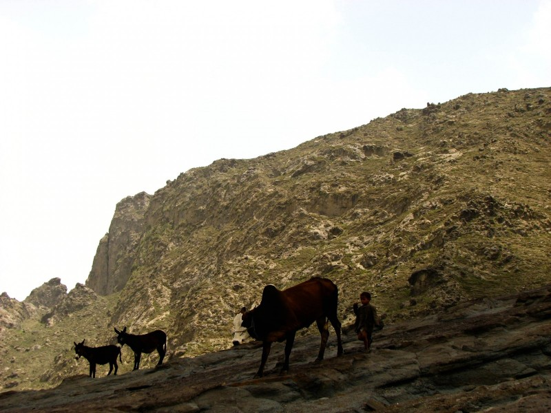 Haraz-Mountains-North-13-2