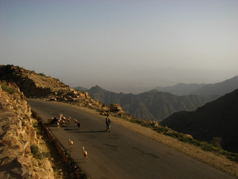 Jabal-Bura-Tihama-West-20-2